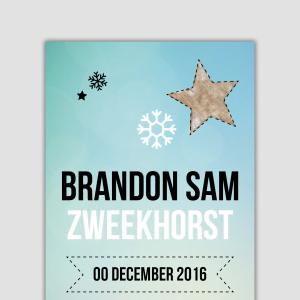 Geboortekaartje Brandon