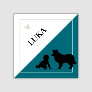 Geboortekaartje Luka